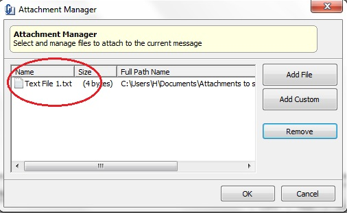Adding a File Attachment